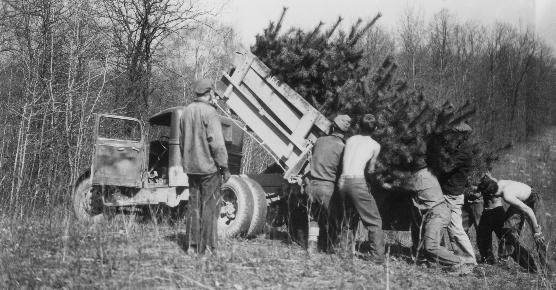 It's Time Again for a Civilian Conservation Corps
